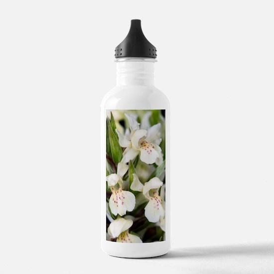 Dactylorhiza sambucina Water Bottle