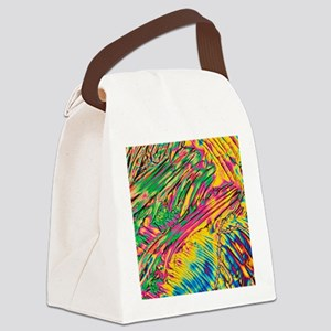 Crystals of enzyme trypsin Canvas Lunch Bag