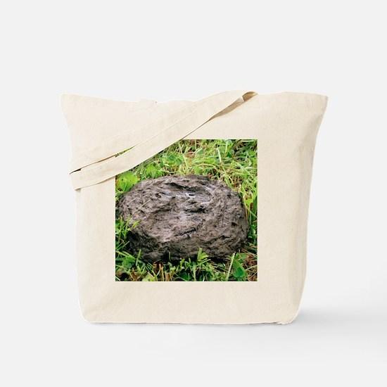 Cow pat Tote Bag