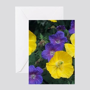 Cranesbill and Iceland poppy flowers Greeting Card