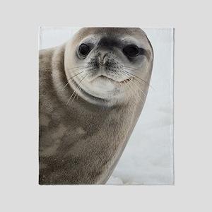 Crabeater seal Throw Blanket