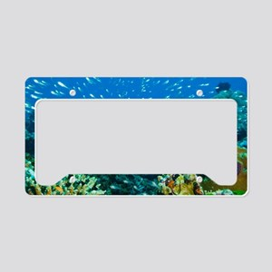Coral reef, Thailand License Plate Holder
