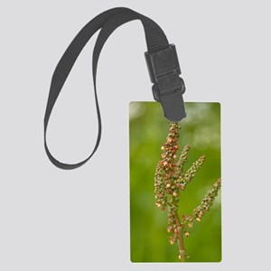 Common sorrel (Rumex acetosa) Large Luggage Tag