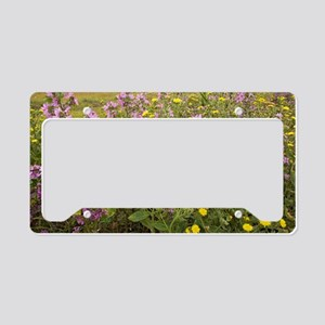 Common mallow and bristly ox- License Plate Holder