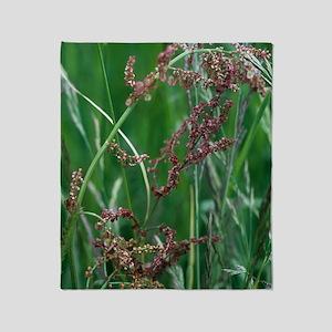 Common sorrel (Rumex acetosa) Throw Blanket