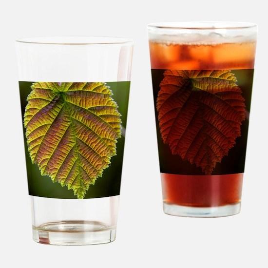 Common hazel leaf Drinking Glass