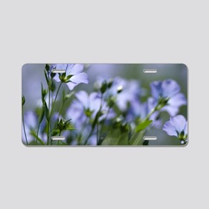 Common flax (Linum usitatis Aluminum License Plate
