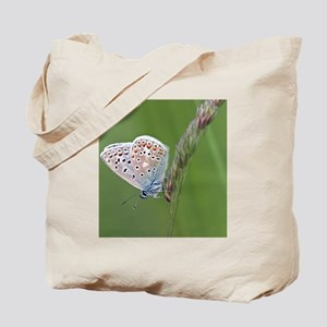 Common blue butterfly Tote Bag