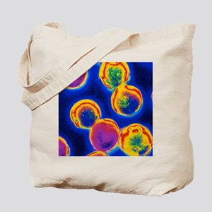 Coloured LM of Halococcus bacteria Tote Bag