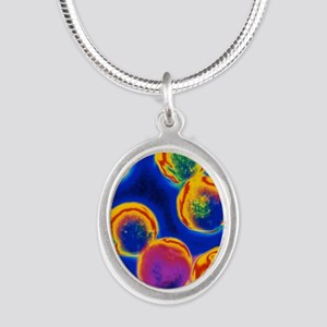 Coloured LM of Halococcus bac Silver Oval Necklace