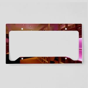 Coloured LED bathroom lights License Plate Holder