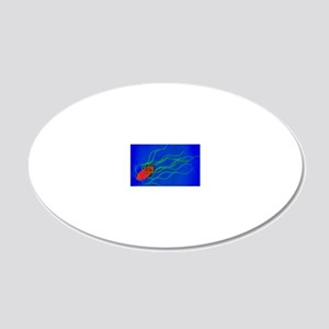 Coloured TEM of a Salmonella 20x12 Oval Wall Decal