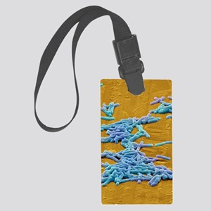 Clostridium difficile bacteria,  Large Luggage Tag