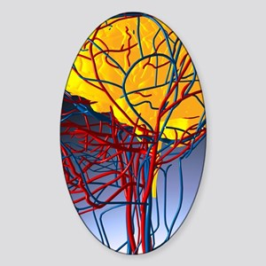 Circulatory system and brain, artwo Sticker (Oval)
