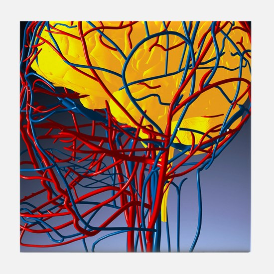 Circulatory system and brain, artwork Tile Coaster