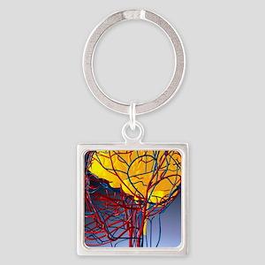 Circulatory system and brain, artw Square Keychain