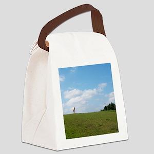 Golden horizon Canvas Lunch Bag