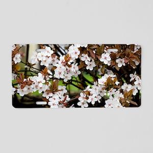 Cherry plum blossom (Prunus Aluminum License Plate