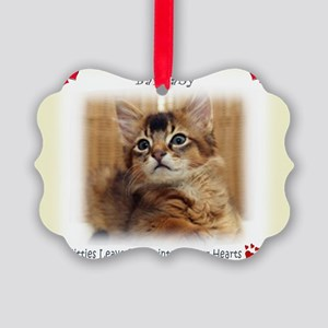 13x9 Picture Ornament