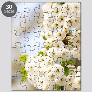 Cherry blossom (Prunus sp.) Puzzle