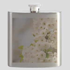 Cherry blossom (Prunus sp.) Flask