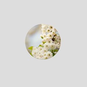 Cherry blossom (Prunus sp.) Mini Button
