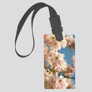 Cherry blossom (Prunus 'Accolade Large Luggage Tag