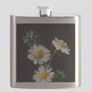 Chamomile flowers Flask