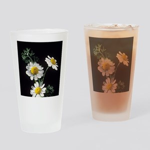 Chamomile flowers Drinking Glass