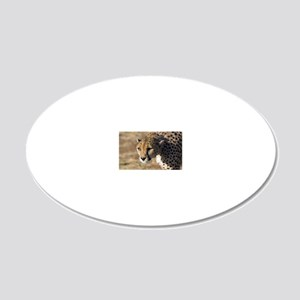 Cheetah 20x12 Oval Wall Decal