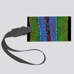 Cerebellum tissue, light microgr Large Luggage Tag