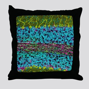 Cerebellum tissue, light micrograph Throw Pillow