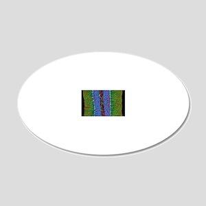 Cerebellum tissue, light mic 20x12 Oval Wall Decal