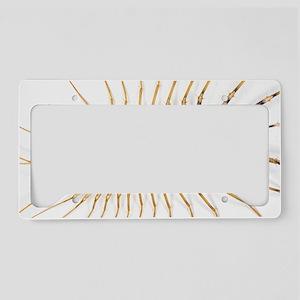 Centipede License Plate Holder