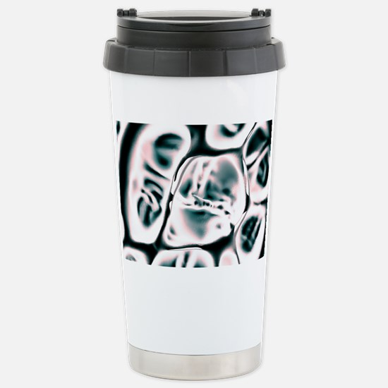 Cell scaffold, artwork Stainless Steel Travel Mug