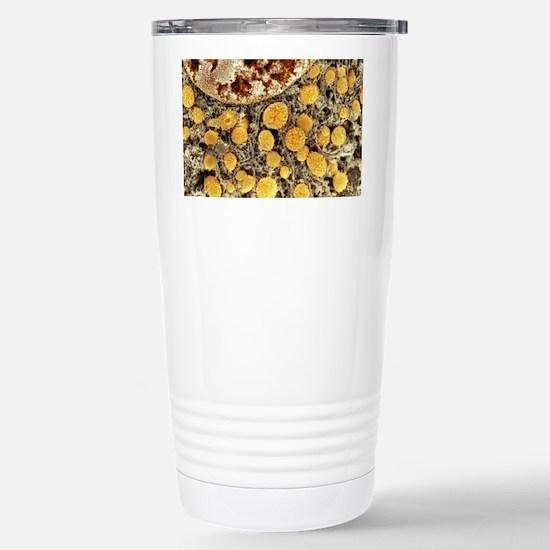 Cell organelles, SEM Stainless Steel Travel Mug