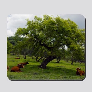 Cattle under a holm oak tree Mousepad