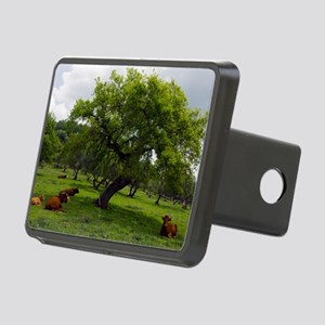 Cattle under a holm oak tr Rectangular Hitch Cover