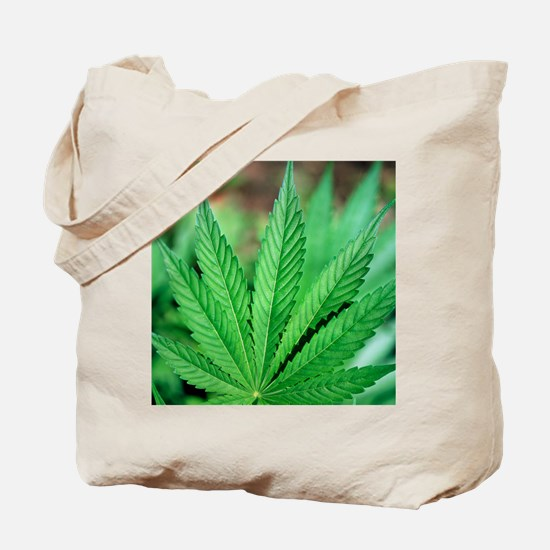 Cannabis leaves Tote Bag