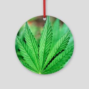 Cannabis leaves Round Ornament