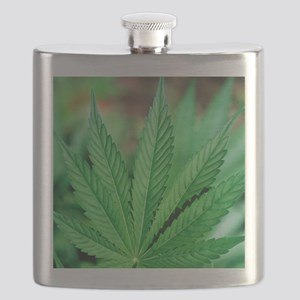 Cannabis leaves Flask