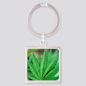 Cannabis leaves Square Keychain