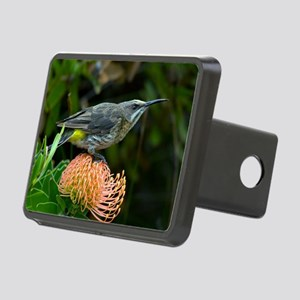 Cape sugarbird on a flower Rectangular Hitch Cover