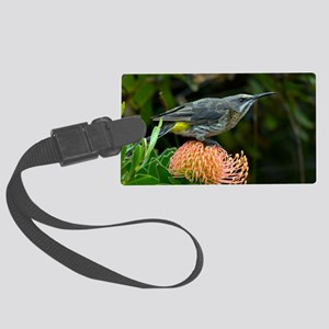 Cape sugarbird on a flower Large Luggage Tag