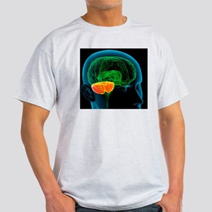 Cerebellum in the brain, artwork Light T-Shirt