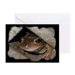 Froggie Greeting Cards (Pk of 10)