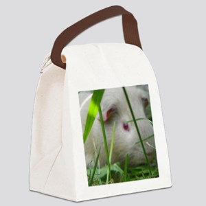 cavy2 Canvas Lunch Bag