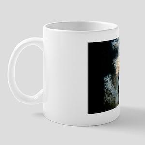 c0043911 Mug