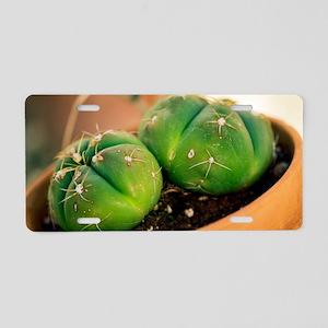 Cactus Aluminum License Plate