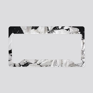 Borax crystals License Plate Holder